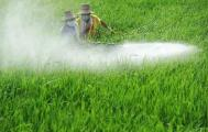 2020年农药行业整合加速
